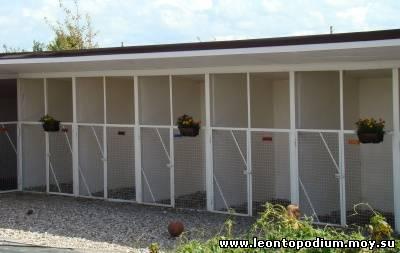 Гостиница для собак эдельвейс